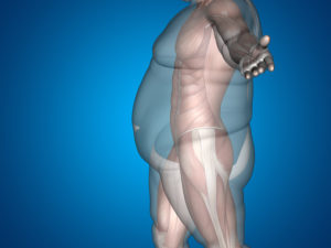 Microbiome Impacts Weight Loss