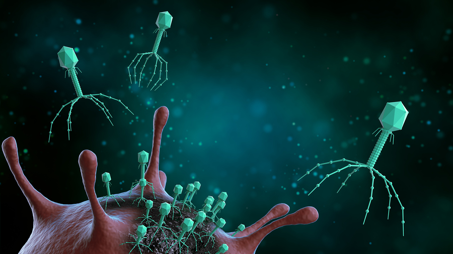 Bacteriophages Are Healthy Viruses